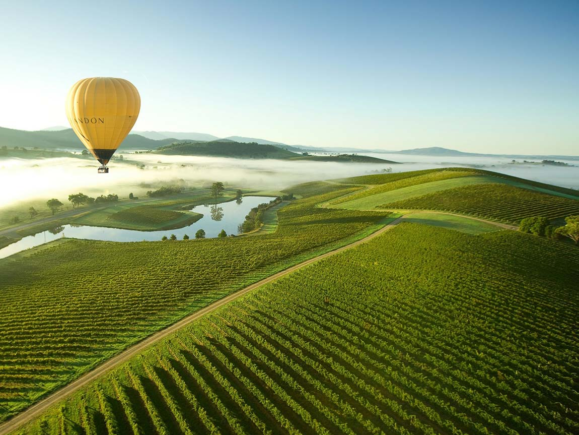 Hot air balloon over the Yarra Valley